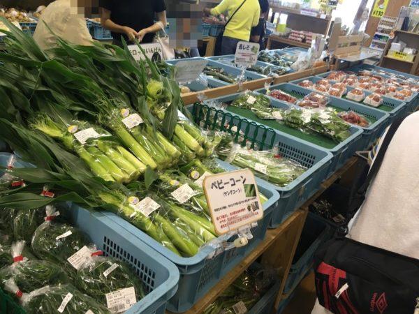 潮見坂道の駅の野菜